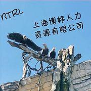 上海博婷人力资源服务有限 公司