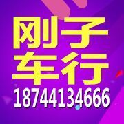 长春市新鑫蕾汽车销售有限公司